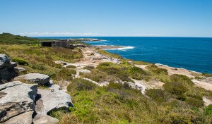 Henry Head Track, Kamay Botany Bay National Park